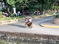 Carriage Fort Santiago, Intramuros, Manila, Philippines - panoramio.jpg
