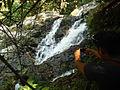 Cascada en Cotomono.jpg