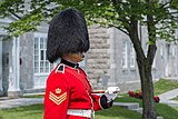 Changing the Guard ceremony in Québec during the summer 07.jpg