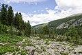 Chemalsky District, Altai Republic, Russia - panoramio (26).jpg