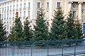 Christmas in Paris (Panthéon-Assas University) (4198910657).jpg