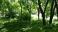 Circular-Park, Yerevan 22.jpg