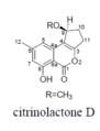 Citrinolactone D.png