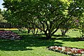 City of London Cemetery - Memorial Gardens lawn and flower beds 02.jpg
