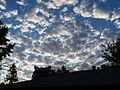Clouds 10-14-10 8 05AM to E (5082495645).jpg