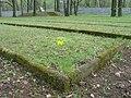 Cmentarz jencow radzieckich stalagu VIIIA.JPG