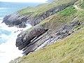 Coast at Newton Cliff - geograph.org.uk - 1480665.jpg