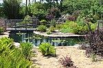 Coastal Georgia Botanical Gardens, Water garden 2.jpg