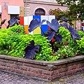 Colmar - panoramio (4).jpg