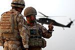 Combat patrol and detainee ops DVIDS295240.jpg