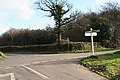 Combpyne Rousdon, crossroads at Charlton Plantation - geograph.org.uk - 294366.jpg