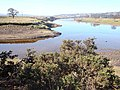 Confluence of the Devil's Water with the Tyne - geograph.org.uk - 1736789.jpg