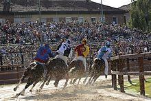 Horse racing - Wikipedia