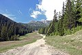 Corvara - trail.jpg