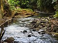 Costa Rica DSCN5927-new (31015379071).jpg