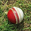 Cricket ball at Highgate Cricket Club, Crouch End, London 01.jpg