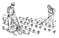 Cultivator 1 (PSF).png