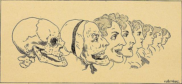 Filecuriosités Médico Artistiques 1907 14765143785jpg