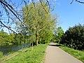 Cycle Path, Sustrans 8 (geograph 6170281).jpg