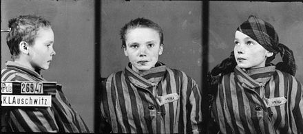 Prisoner identity photograph taken by the German SS of a Polish girl deported to Auschwitz. Approximately 230,000 children were held prisoner, and used in forced labour and medical experiments. Czeslawa Kwoka - Brasse.jpg