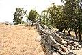 Düzorman castle - panoramio.jpg