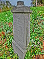D-BW-Tettnang - Gefallenendenkmal 2826.JPG