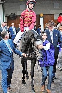 Oisin Murphy Irish jockey
