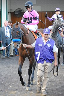 West Coast (horse) American-bred Thoroughbred racehorse