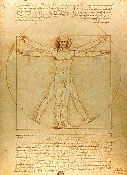 Da Vinci Vitruve Luc Viatour (cropped)
