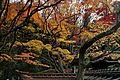 Daitoku-ji (4580423330).jpg