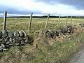Damaged dyke - geograph.org.uk - 1185102.jpg