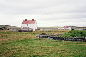 Darwin, Falkland Islands - Darwin in 2003