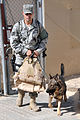 Davis-Monthan NCO, Deming Native, Secures Southwest Asia Base As MWD Handler DVIDS276257.jpg