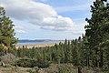 Davis Creek Park - panoramio (58).jpg