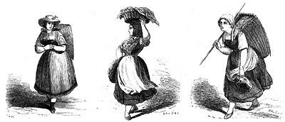 Die Gartenlaube (1859) b 129 1.jpg