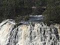 Dip Falls, Tasmania 20190722-022.jpg