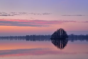 Milicz Ponds - Milickie Ponds Nature Reserve in Barycz Valley Landscape Park