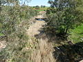 Downstream of Thiele Hwy bridges over River Light, Kapunda.JPG