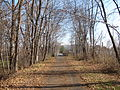 Downtown Cheshire Trail, Keene NH.jpg