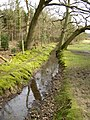 Drainage ditch alongside the Churchplace Inclosure, New Forest - geograph.org.uk - 148205.jpg
