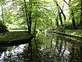 Driebergen-Rijsenburg - Sparrendaal Park RM519725.JPG