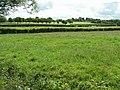 Drumlea Townland - geograph.org.uk - 857710.jpg