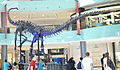 Dubai Mall Dinosaur.jpg