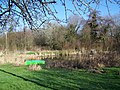 Duck Pond - geograph.org.uk - 686239.jpg