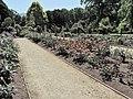 Dunedin Botanic Garden kz02.jpg