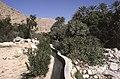Dunst Oman scan0144 - Falaj System.jpg