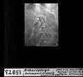 ETH-BIB-Archaeopteryx (Archaeornis Simensi) Dia-…?- 1948)-Dia 247-15073.tif