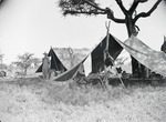 ETH-BIB-Camp Serengeti-Kilimanjaroflug 1929-30-LBS MH02-07-0312.tif