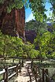 Early morning in Zion National Park - (22811190925).jpg
