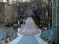 Eastward view of Locust Walk.jpg